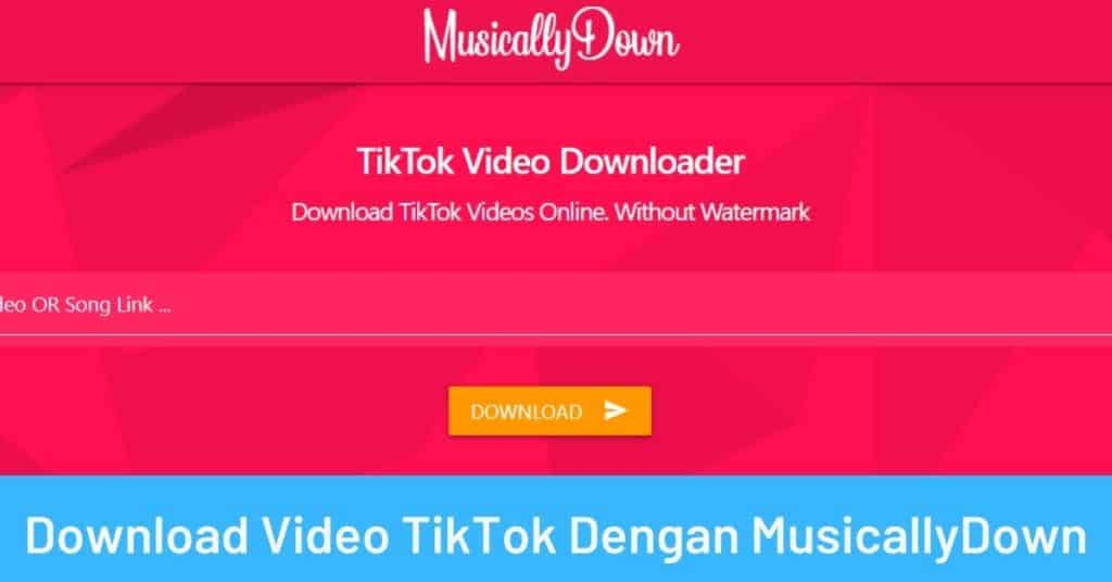 Download Video TikTok Dengan MusicallyDown
